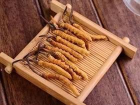 很多人用错误的方法在吃虫草!请看:冬虫夏草吃法正解!