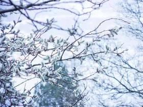 冬至 | 稻城亚丁不只有美景,还有这些