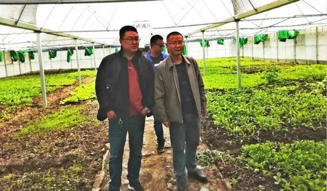 木拉乡麻格同村:蔬菜种植带动农牧民增产增收