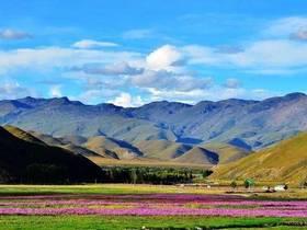 景区分红6000万元给老百姓,旅游业对稻城县经济作突出贡献
